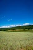 Appalachian Landbouwbedrijf Stock Afbeelding