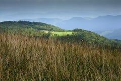 appalachian max trail för nf-lapppisgah Arkivbild