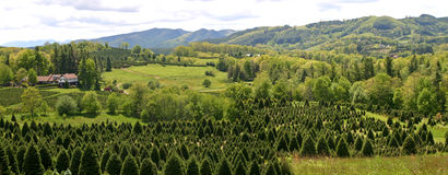 Appalachian Mountain Panorama Royalty Free Stock Photos