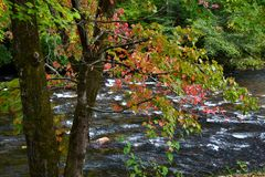 Appalachian Mountain River Autumn-0. River running through the Appalachian Mountains in the Autumn Stock Photo