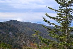 Appalachian Mountain Scene-03. Early fall (October) in the Smokey Mountains on a blustery morning Royalty Free Stock Image