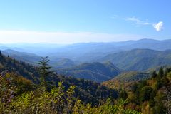 Appalachian Mountain Scene-05. Early fall (October) in the Smokey Mountains on a clear morning Stock Photos