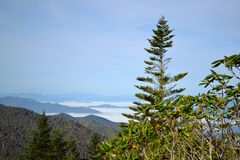 Appalachian Mountain Scene-13. Early fall (October) in the Smokey Mountains on a hazy morning Royalty Free Stock Photography