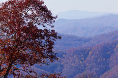 Appalachian Mountains At Sunset And Autumn Foliage Stock Images