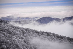 Appalachian Mountains in the winter Stock Image