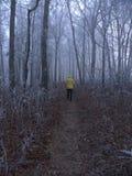 Appalachian slinga--Hogpen Gap, Georgia Royaltyfria Foton