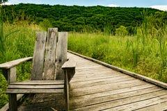 Appalachian slingastrandpromenad i New York Royaltyfri Foto
