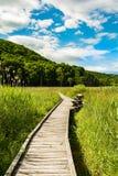 Appalachian slingastrandpromenad i New York Royaltyfria Bilder
