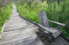 appalachian trail arkivfoto