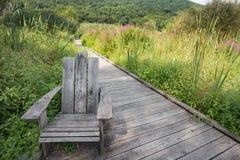 appalachian trail royaltyfri foto