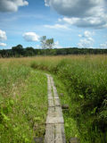 Appalachian Trail stock photo