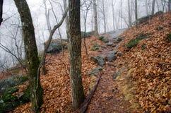 Appalachian Trail Big Cedar Mountain Path Stock Images