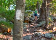 Appalachian Trail Blaze com o caminhante no fundo imagem de stock royalty free