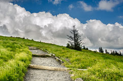 Appalachian Trail Climbing Up Round Bald. A gravel and dirt trail winds up Round Bald near Roan Mountain stock image