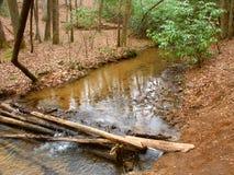 Appalachian Trail in Georgia Stock Photos