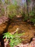 Appalachian Trail Stream Georgia Stock Images