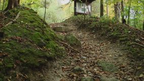 Appalachian Trail (4 of 4). This video is about 2013-09-27 berkshires stock video