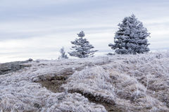 Appalachian Trail Winter Hike Stock Images