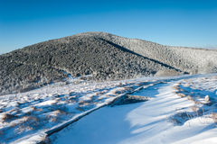 Appalachian Trail in Winter over the Roan Highlands Royalty Free Stock Photography