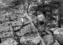 Appalachischer Hinterwanderer über Flusssteinen Stockbilder
