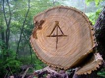 Appalachisches Hintersymbol Lizenzfreie Stockbilder