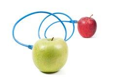 appales εννοιολογικό πλάνο Στοκ εικόνα με δικαίωμα ελεύθερης χρήσης