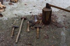 Apparat för att hugga av träd Förbereda vedträ Hugga av trä för bränsle Royaltyfria Bilder