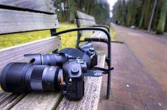 Appareil-photo de banc d'itinéraire aménagé pour amateurs de la nature Image libre de droits