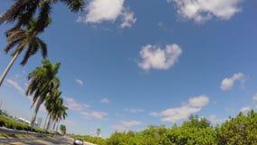 Appareil-photo de conduite faisant face jusqu'aux nuages banque de vidéos