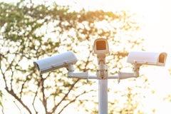 Appareil-photo de télévision en circuit fermé de sécurité installé dans le parc au secteur public sur bleu Photos stock