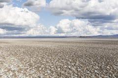 Appartamenti di fango salati del lago asciutto desert Fotografia Stock