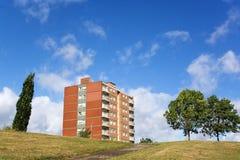 Appartamenti ed alberi Fotografia Stock
