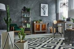 Appartamento con il cactus decorativo fotografia stock libera da diritti