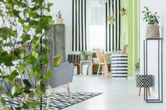 Appartement à la mode avec les plantes vertes Image stock