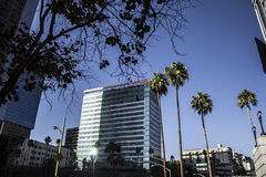 Appartement de gratte-ciel et jeu d'immeuble de bureaux Images libres de droits