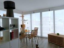 Appartement tour: Veranda/living room (+ cat) Royalty Free Stock Photo