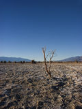 Appartements de Death Valley photo stock