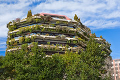 Appartment building covered by climbing plant - creeper royalty free stock photos