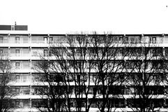 Appartment building with trees in black and white Royalty Free Stock Photography