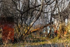 Lost Place royalty free stock image