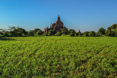 The appearance of the ancient pagoda, and the green fields. Bagan, Myanmar Stock Images