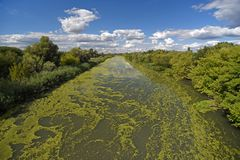 The color of the polluted river. The appearance and color of the surface of the river that is contaminated royalty free stock photography