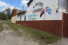 Che Guevara Royalty Free Stock Photo