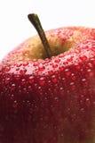 Appel stock afbeeldingen