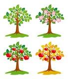 Appel-boom bij verschillende seizoenen Stock Foto