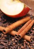 Appel &cinnamon Stock Fotografie