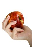 Appel in een vrouwelijke hand royalty-vrije stock afbeelding