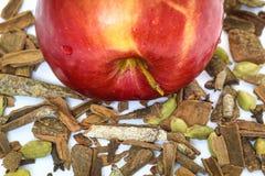 Appel en kaneel Stock Afbeelding