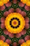 Appel en oranje gardeniamandala royalty-vrije illustratie