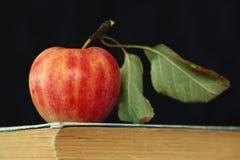 Appel en oud boek stock foto